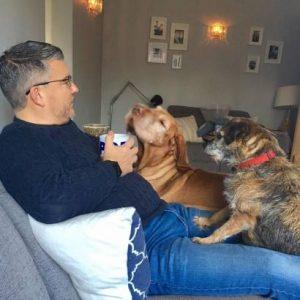 calm canines dog training