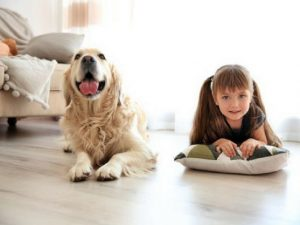 Top 5 Mental Health Benefits of Owning a Dog