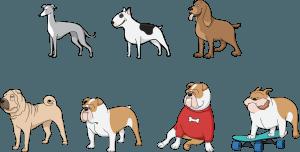 5 Major Factors That Affect Your Dog's Lifespan