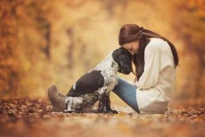 How Do Dogs Choose Their Favorite Person?